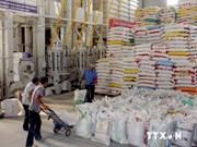 九龙江三角洲大米出口创汇10亿美元