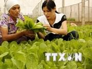 2014年上半年越南农业生产呈现良好发展态势