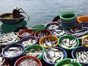 2014年上半年越南水产捕捞产量增长5.3%