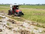 至2020年越南农业展望:以公私合作模式促进农业发展