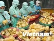 2014年7月份越南农产品出口额保持增长势头