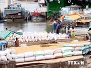 加大越南九龙江三角洲农产品的生产与销售力度
