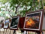 第29届九龙江三角洲地区艺术图片联欢会圆满落幕