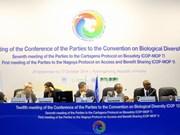 东盟承诺加强生物多样性保护工作