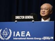 国际原子能机构承诺支持越南发展核电