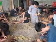 越南:为戒毒人员创造就业
