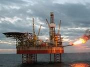 越俄油气联营公司石油销售收入约达43.4亿美元