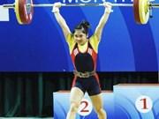 2014年第七届越南全国体育大会:举重、游泳、武术和跆拳道比赛陆续开赛