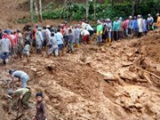 印尼山体滑坡造成至少32人死亡76人失踪