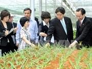 日本宫崎县与越南南定省合作助推高技术农业发展