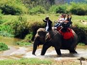 越南西原地区加大旅游推广力度