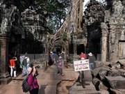 2014年柬埔寨接待国际游客量约达450万人次