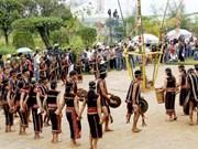 巴那族较具代表性的传统乐器
