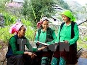 越南将对53个少数民族经济社会发展情况进行调查