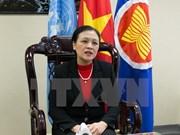 越南常驻联合国代表团团长阮芳娥:越南继续积极参加联合国各项活动