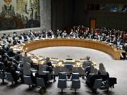 越南支持各国有关和平、安全与发展间密切关系的观点