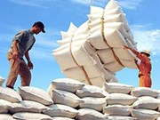 今年前7个月全国出口金额约达514.6亿美元