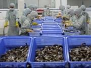 在越南主要水产出口商品中虾类出口增长率最高