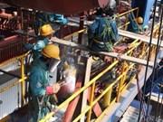 越南永昂热电厂项目获9500万美元信贷支持