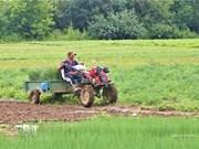 组图:越南农民在俄罗斯种菜