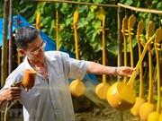 组图:天琴——高平省岱依族、侬族的独特传统乐器