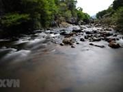 组图:广治省椰隆促进社区生态旅游