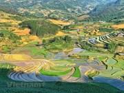 组图:伊子备耕期:空中的美丽画面