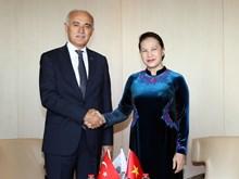 越南国会主席阮氏金银会见土耳其土耳其对外经济关系委员会主席(组图)