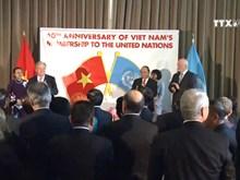 越南在联合国舞台上的地位日益得到提高