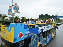 广宁省:乘坐双层观光巴士漫游广宁市(组图)