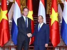 荷兰首相马克•吕特对越南进行正式访问(组图)