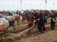 越南政府常务副总理张和平出席碗山籍田节(组图)