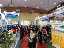 2019年越南国际旅游展吸引众多参观者驻足围观(组图)