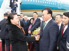 越南国会主席阮氏金银抵达釜山 开始对韩国进行正式访问(组图)