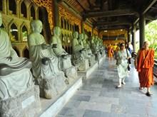 越南旅游:前5月宁平省长安名胜群接待游客近500万人次(组图)