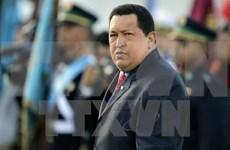 有关委内瑞拉已故总统查韦斯生平与思想生涯座谈会在河内举行