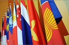 越南-东盟:20年并肩与融入