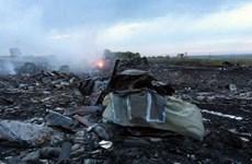MH17失事现场发现疑似导弹碎片