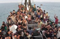 马来西亚沉船事故:死亡人数已升至50人