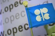 印尼将重新加入石油输出国家组织