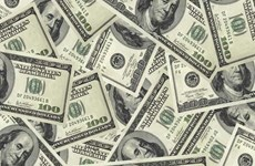 美联储加息计划不会影响越盾汇率稳定趋势