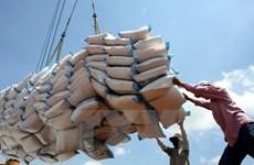 越南大米出口呈复苏势头