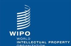 越南出席世界知识产权组织成员国大会第55次会议