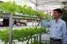 2015年越南平阳省安全农产品促销会拉开序幕