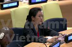 越南对在东海的违反国际法行为表示担忧