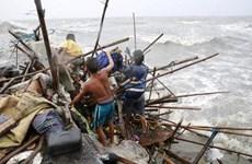 """台风""""巨爵""""吹袭菲律宾致2死4伤1.6万名居民疏散"""