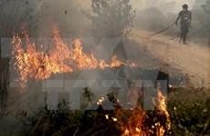 菲律宾客船倾覆和印尼森林大火致使十多人死亡
