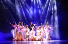 中国云南省艺术团在河内举行特殊艺术表演晚会
