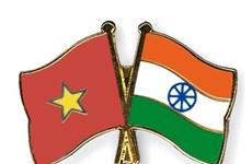 越南与印度加强致力于和平与繁荣的合作关系