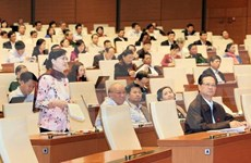 越南第十三届国会第十次会议发表第二十号公报